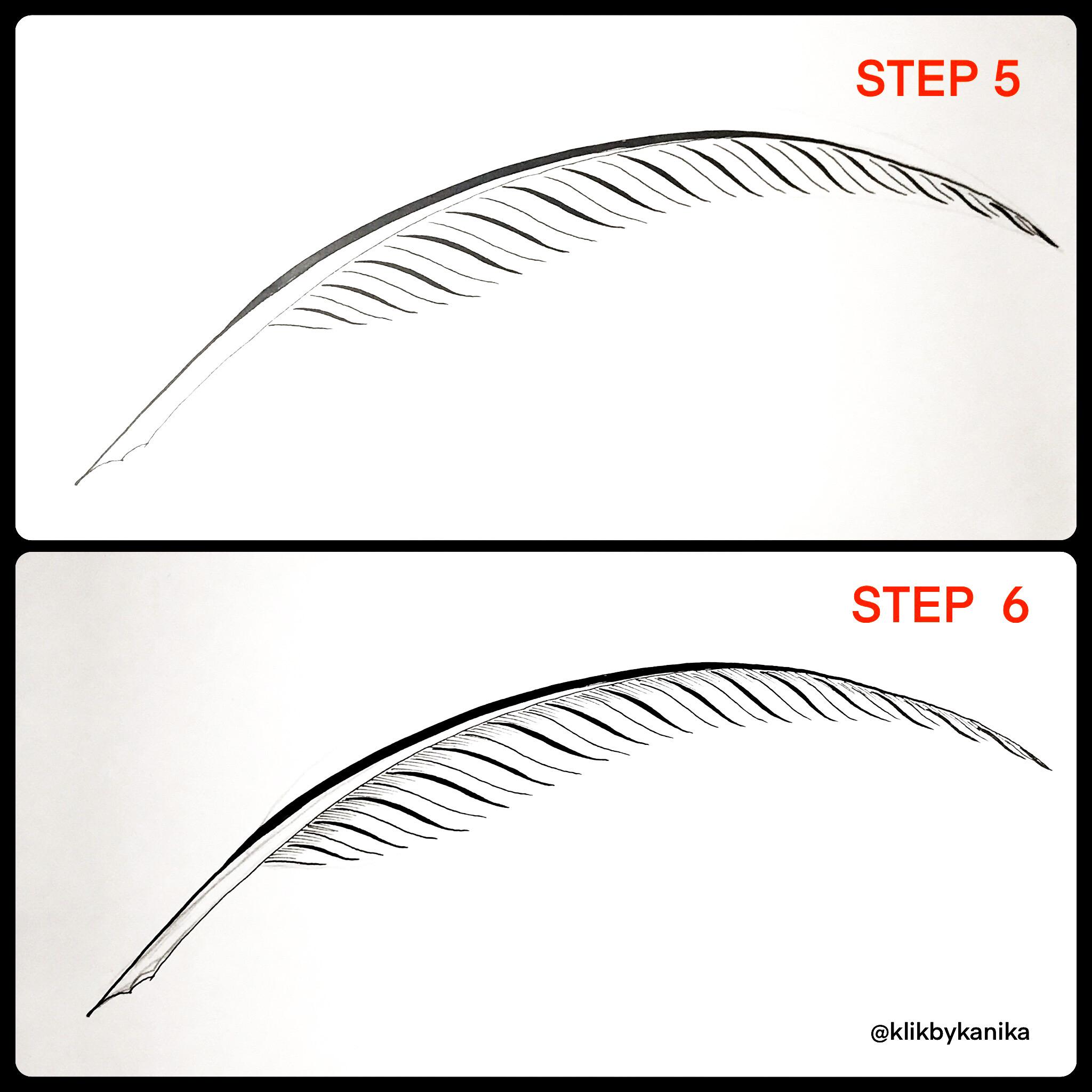 step 5/6 kanika