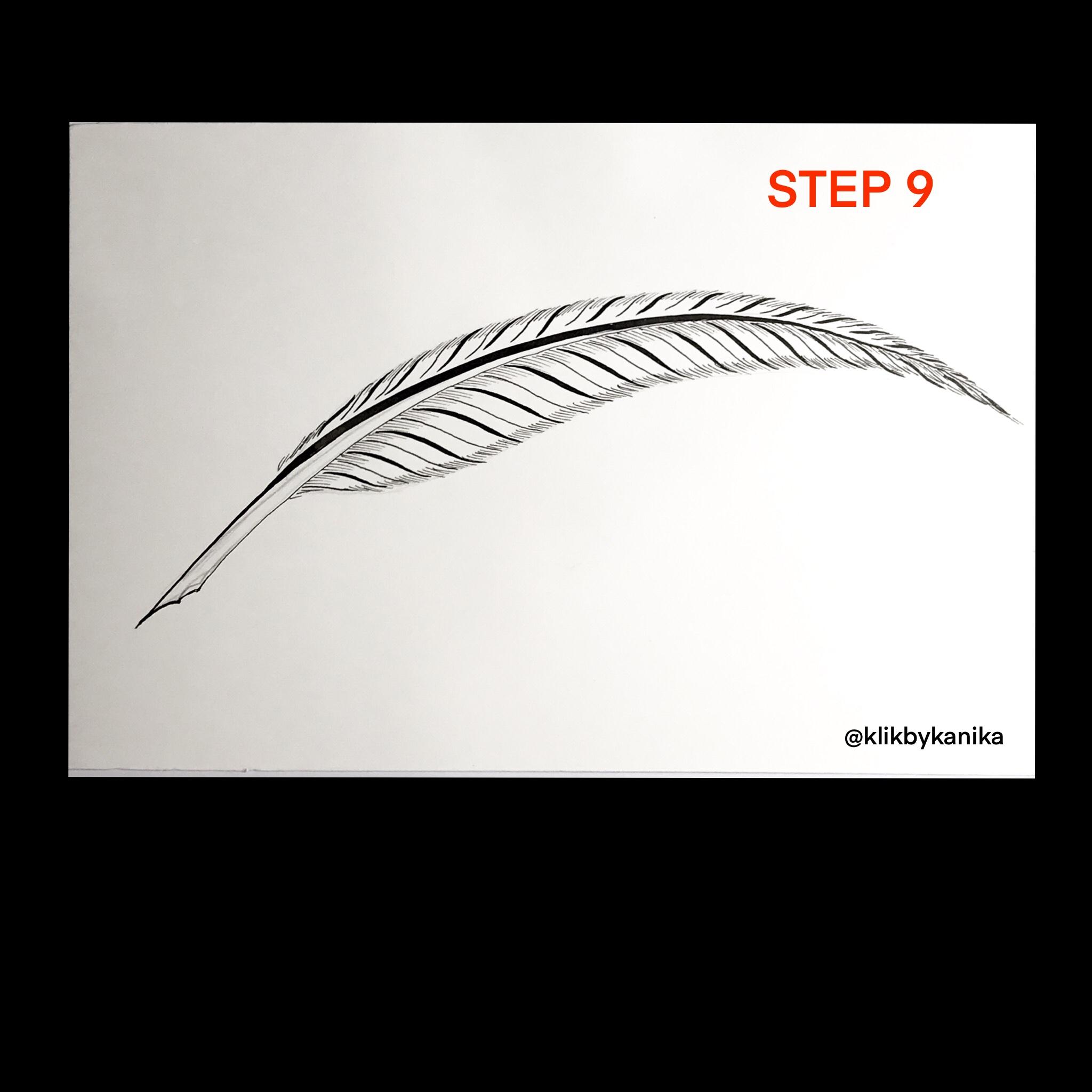 step 9 kanika